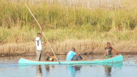 A boat being punted past the Island Safari Lodge, Maun