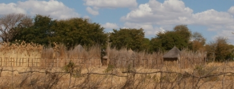 The Kavango style of domestic architecture was similar to that in Ovamboland, but the walls and fences were often built of grass rather than sticks