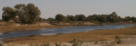 The Boteti River at Rakops