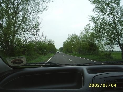 The Somerset Leveds, with the road lined with basket willows 4 May 2005