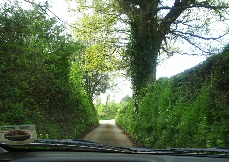 Devonshire lanes near Dunchideock,  with high banks and hedges, and no view of the countryside. 4 May 2005.