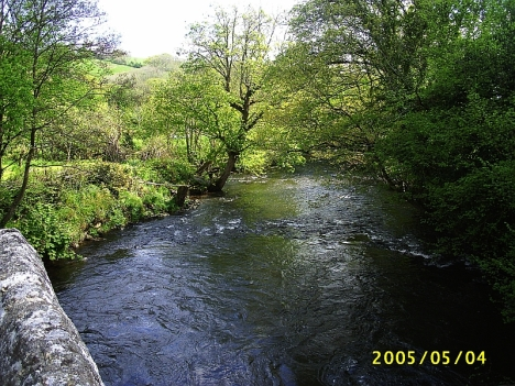 The River Teign at Ashton. 4 May 2005.