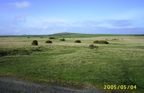 Dartmoor - resmbles the South Africah Highveld.
