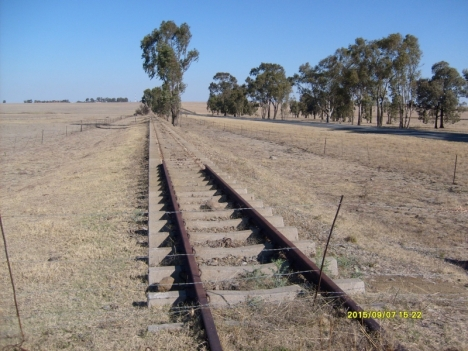 Abandoned railway lines between Villiers and Balfour, 7 September 2015
